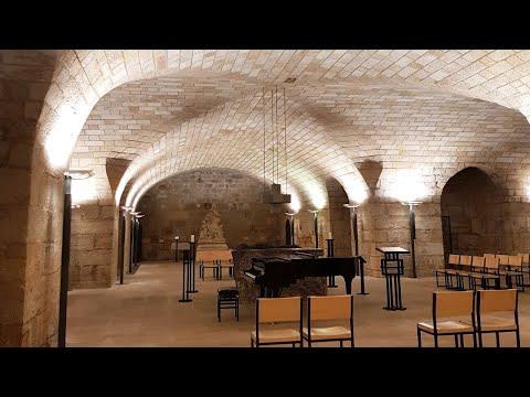 Bach, Haydn, Schumann, Liszt: Live Stream Concert - Dresden Frauenkirche | Tiffany Poon