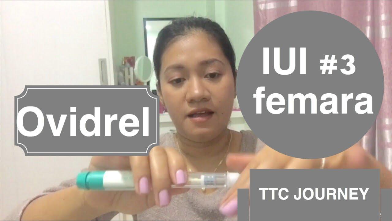 TTC Journey: ovidrel trigger shot and IUI