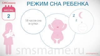 Ребенок 2 месяца - режим ребенка, режим сна, как уложить спать
