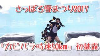 2017/04/19発売 ニューシングル カピバラ時速50km.