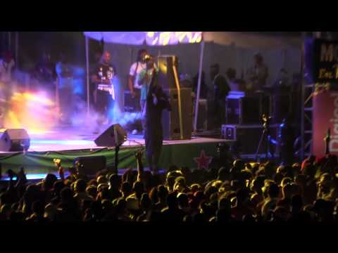 Anguilla August Monday Beach Party 2015 VIP Badge + Beenie Man (J|RICHARD)