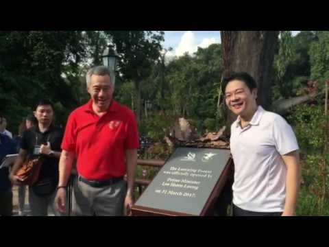 PM Lee opens Learning Forest at the Botanic Gardens