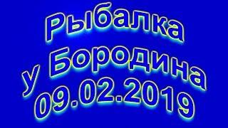Риболовля у Бородіна(4K/60fps) 09.02.2019