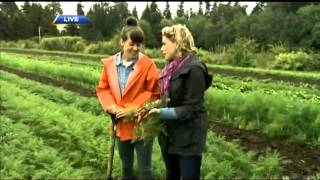 BT Vancouver: Dawns Heads To UBC Farm