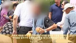 [아주동영상] (분노주의) 무질서로 얼룩진 사과 축제
