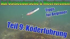 Spinnfischen auf Dorsch & Meerforelle für Beginner (Teil 9: Die richtige Köderführung (full-HD)