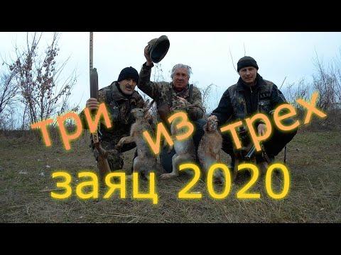 ОХОТА на ЗАЙЦА  2020 г.    ТРИ  ИЗ ТРЕХ.  Hare Hunting.