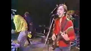 The Fleshtones - Hexbreaker & Supervindicator (TV Live)