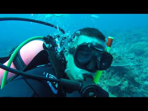 Diving at Louisa and Royal Charlotte Reef, Spratly Islands