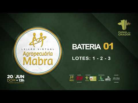 BATERIA 1 LOTE 1 2 3