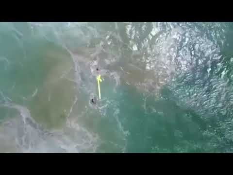 Two boys dramatically saved by DRONE after being dragged out to sea