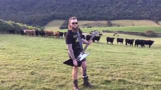 Guy Plays Doom Metal For Cattle