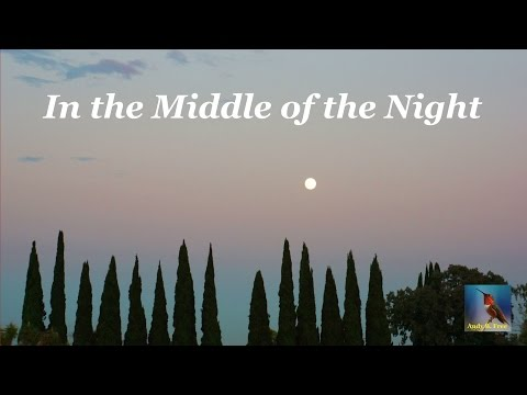 Andy B. Free - In the Middle of the Night - Soft Rock Song - from the album