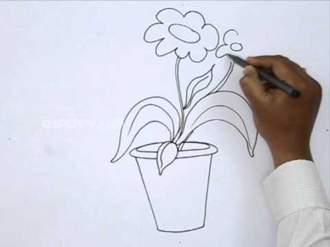 How To Draw A Flower Pot Youtube