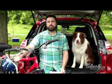Your Car is Talking, Are You Listening? Pedestrian & Bicycle Detection - With Rick & Scout