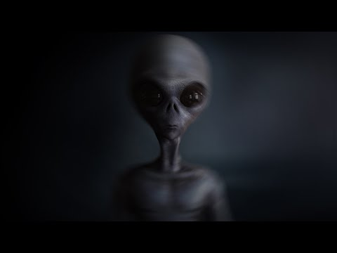 The Greys and The Secret Treaty With Extraterrestrials