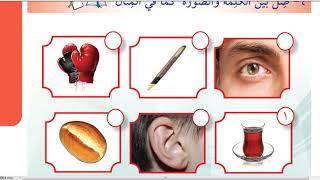 İHO 8.Sınıf Arapça / 2.Ünite / YAZ TATİLİ