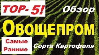 ТОП5 - Ультра Ранние сорта Картофеля!(, 2017-03-29T23:00:31.000Z)