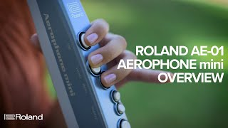 Roland AE-01 Aerophone mini: Overview