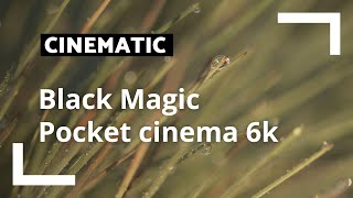 Blackmagic 6K | Cinematic | CameraNU.nl