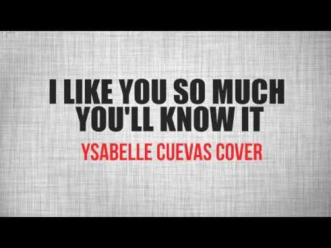 I Like You So Much, You'll Know It (我多喜欢你,你会知道) - A Love So Beautiful OST Lyrics