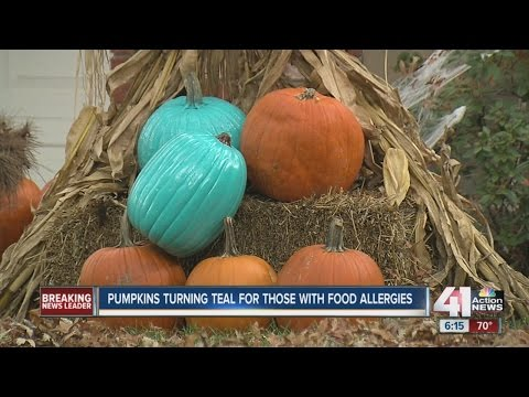Teal pumpkins a sign for kids with allergies