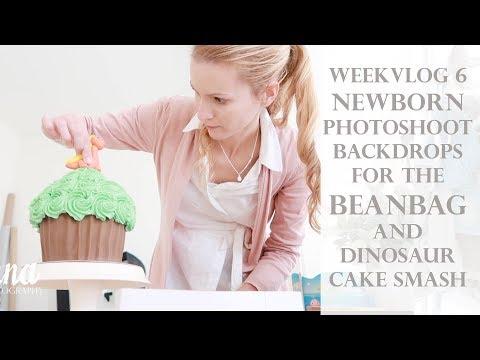 weekvlog 6 -  Newborn Photography Backdrops for the Beanbag and a Dinosaur Cake Smash Photoshoot