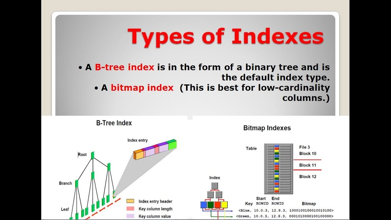 Types of Indexes (A B-tree index,A bitmap index ) - YouTube