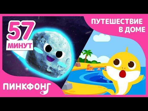 Пойдем в космос, на сафари, к океану с нами! | +Сборник | Пинкфонг Песни для Детей