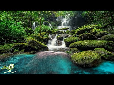 Relaxing Piano Music: Sleep Music, Water Sounds, Meditation Music, Relaxing Music ★45🍀