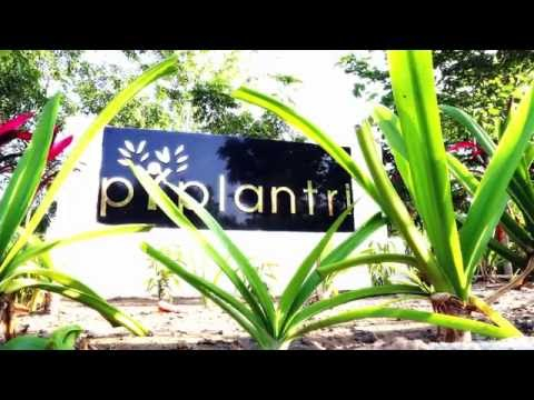 PIPLANTRI - AN ECO-FRIENDLY VILLAGE