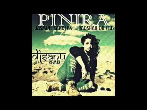 Pinjra - Jasmine Sandlas , Badshah & Dr Zeus (DJ...