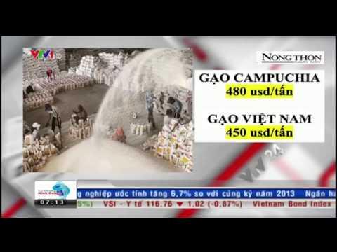 Gạo Việt Nam thua gạo Campuchia trong dợt cạnh tranh gần đây nhất