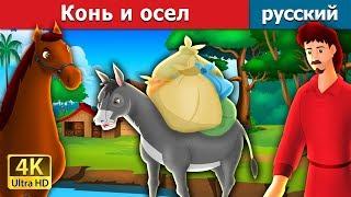 Конь и осел   сказки на ночь   русский сказки