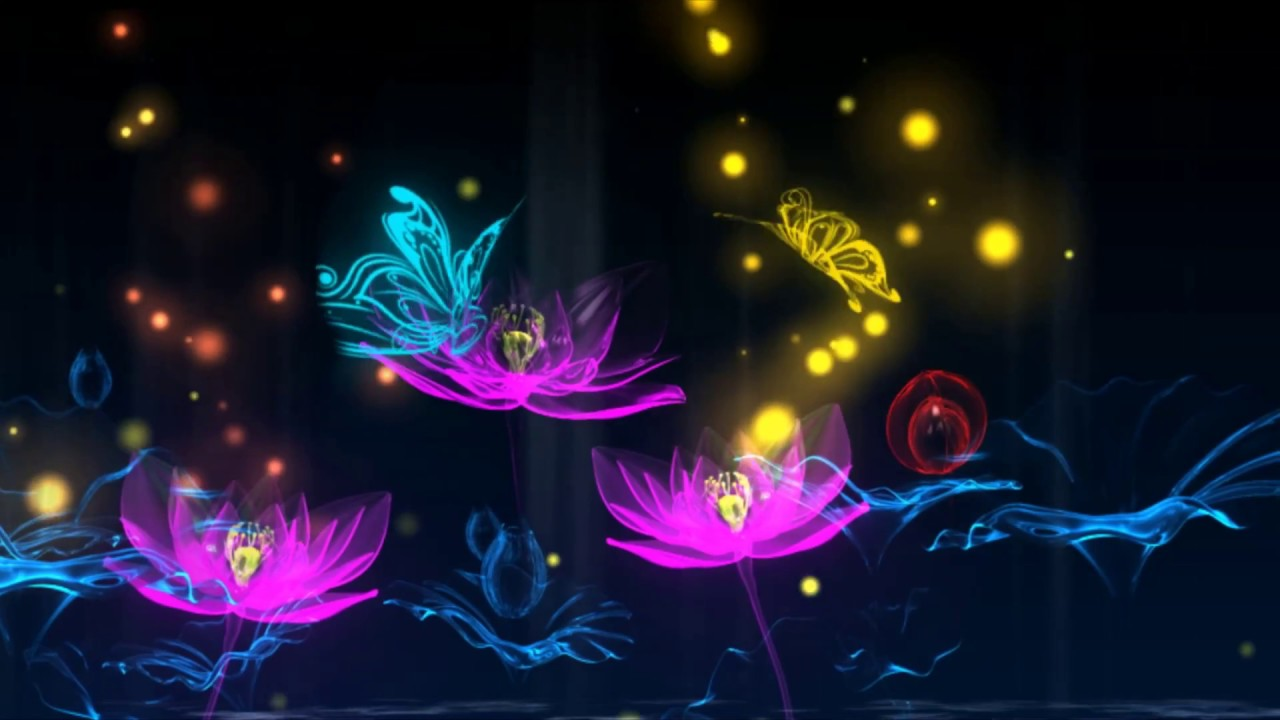 Lotus flower blooming video background with butterfly youtube lotus flower blooming video background with butterfly mightylinksfo