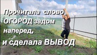 ОБЗОР УЧАСТКА в середине сентября. Мои выводы за первый сезон на Кубани. Убираю томаты/Переезд на юг