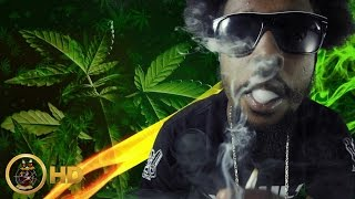 Popcaan - Weed Is My Best Friend [Official Music Video HD]
