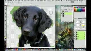 أدوبي فوتوشوب CS5 البرنامج التعليمي - كيفية إزالة الخلفية من الصورة