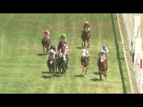 Woodbine, Tbred, July 3, 2016 Race on