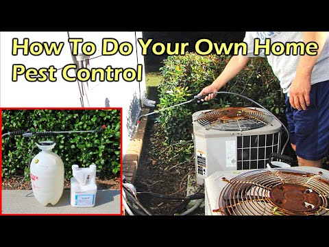 how-to-do-your-own-home-pest-(bug)-control---talstar-p