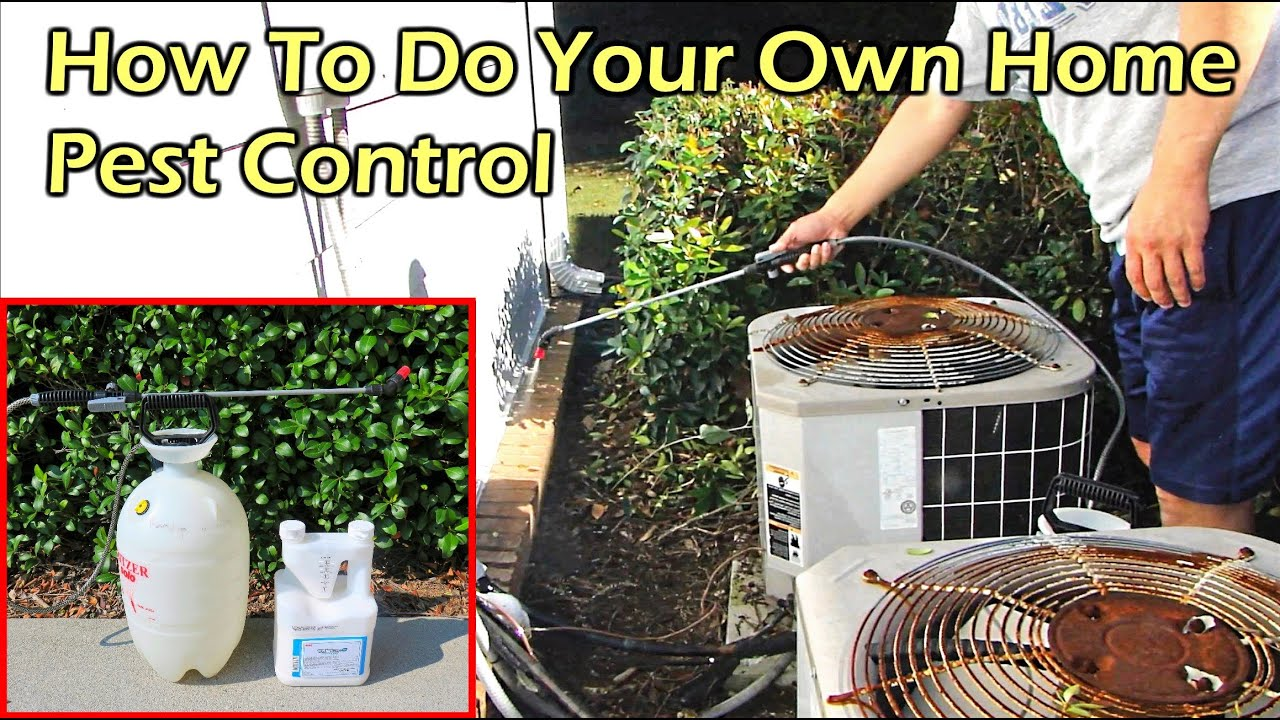 How To Do Your Own Home Pest (Bug) Control - Talstar P