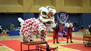 第21屈全港公開學界龍獅藝錦標賽 中學獅藝地青組 9