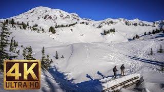Mount Rainier National Park. Episode 3 - 4K Nature Documentary Film