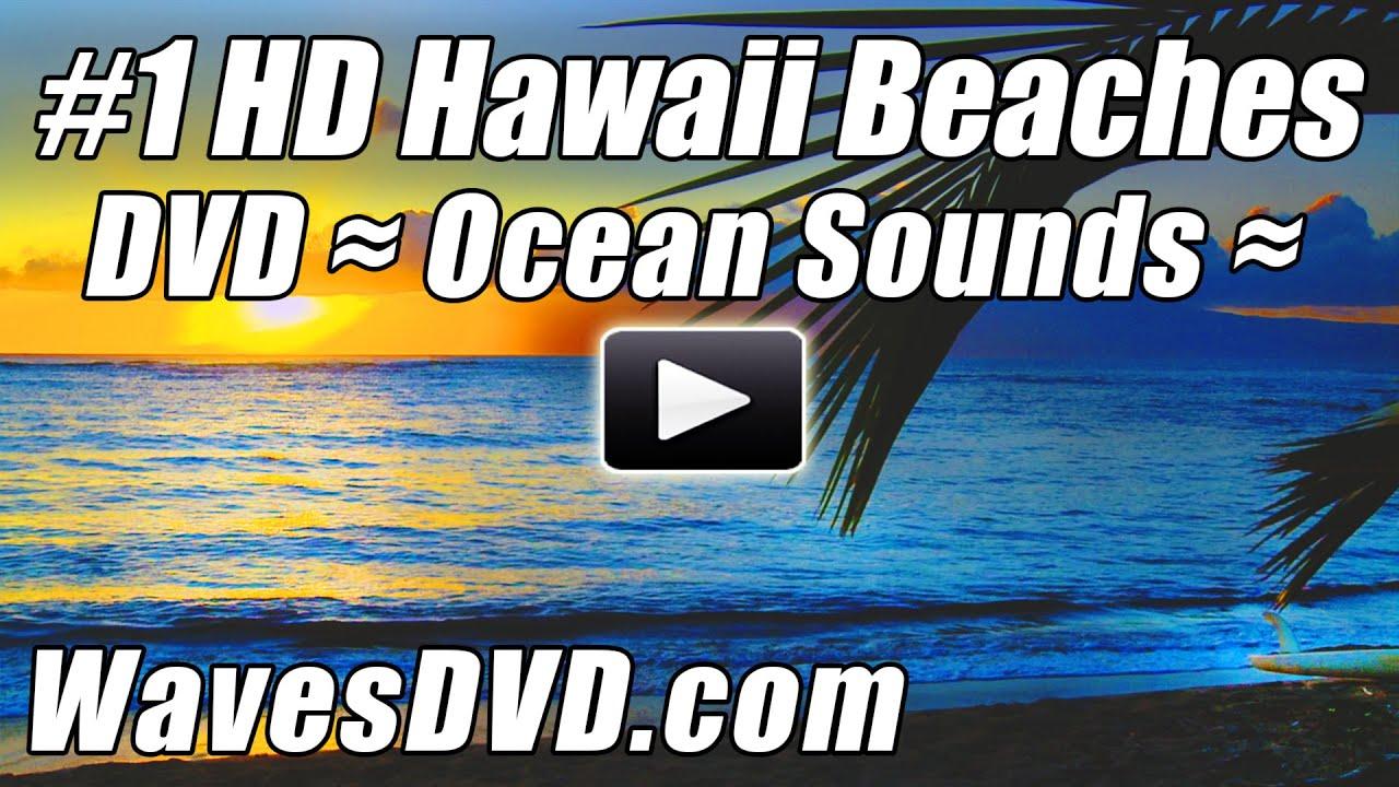 Tropical Island Beach Ambience Sound: HAWAII BEACHES #1 WAVES DVD HD Video Relaxing Ocean Sounds