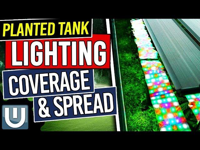 Coverage & Spread in Planted Tank Lighting  - Planted Aquarium Lighting Guide - Part 4