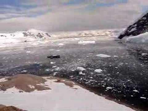 Neko Harbor Antarctica