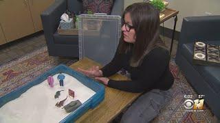 Dallas Children's Advocacy Center Shows How Kids Heal