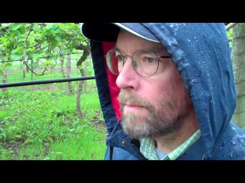 Kiwi Farm Tour with Mark Nielson