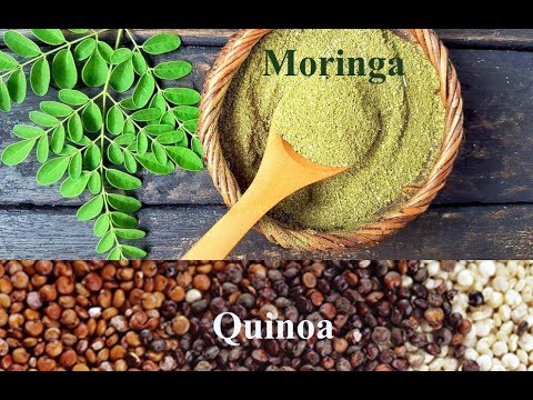 Miracle Crop in Pakistan very highly nutrition value (Super Food ) Moringa & Quinoa
