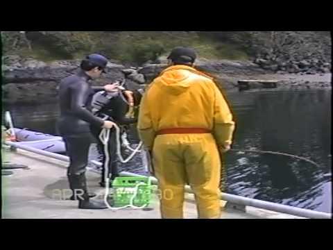 Naval Reserve Divex 1990 - Part 1